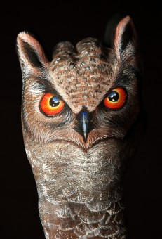 Painting Art by Guido Daniele - Owl1-231x340