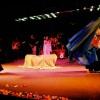 http://diafanes.com.br/eng/wp-content/uploads/2013/03/live019.jpg